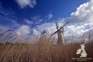 Norfolk Windmills