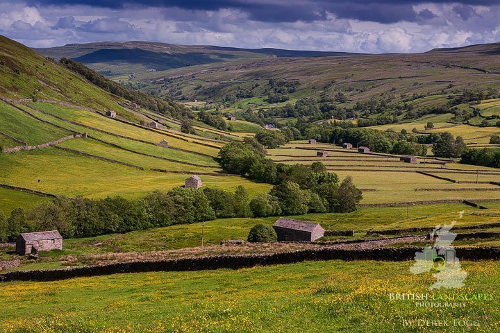 A view down Swaldale featuring the iconic stone barns and walls